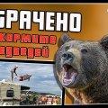 Не кормите медведей | ПОТРАЧЕНО видео