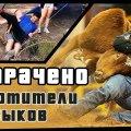 Укротители быков | ПОТРАЧЕНО видео