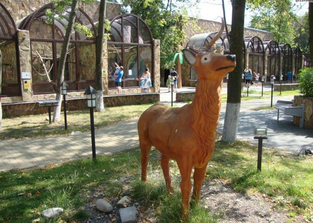 лимпопо зоопарк нижний цены