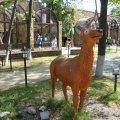 """Зоопарк """"Лимпопо"""", Нижний Новгород: цены, фото, адрес, лучшие советы перед посещением"""
