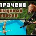 Лошадиный спецназ | ПОТРАЧЕНО видео