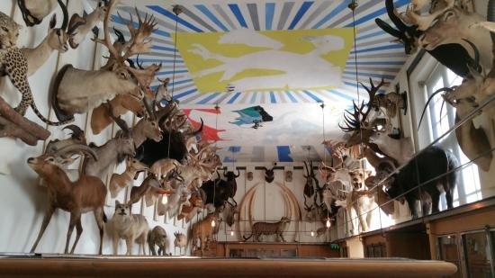 Музей Chasse et de la Nature