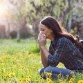 Как спастись от аллергии в весенне-летний сезон