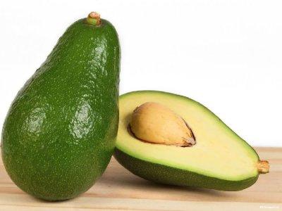 Авокадо в домашних условиях: как вырастить деревце из косточки