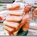 ПРИКОЛЫ 2020 Июнь #39 ржака угар прикол - ПРИКОЛЮХА видео