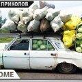 ПРИКОЛЫ 2020 Август #56 ржака угар прикол - ПРИКОЛЮХА видео