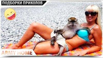 ПРИКОЛЫ 2020 Сентябрь #64 ржака угар прикол - ПРИКОЛЮХА видео