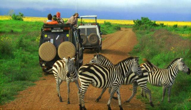 Путешествие по Африке