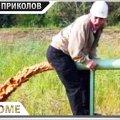 ПРИКОЛЫ 2021 Январь #118 ржака до слез угар прикол - ПРИКОЛЮХА видео