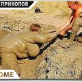 ПРИКОЛЫ 2021 Февраль #146 ржака до слез угар прикол - ПРИКОЛЮХА видео