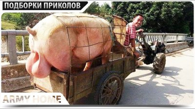 ПРИКОЛЫ 2021 Март #157 ржака до слез угар прикол - ПРИКОЛЮХА видео