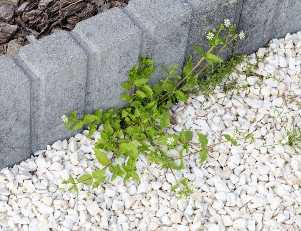 Еще бетон.png