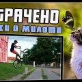 Котики и милота | ПОТРАЧЕНО видео
